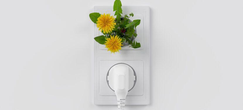 Strom aus der Region – Photovoltaikanlagen fördern